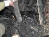spurensicherung_kd2006_08.JPG-nggid03196-ngg0dyn-100x75x100-00f0w010c011r110f110r010t010