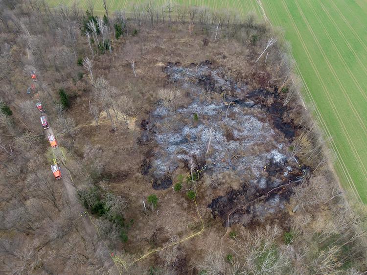 Waldbrand Unterpfaffenhofen, Bild 01